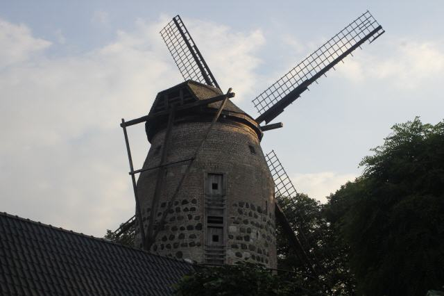Windmühle Zons